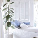 Planta ficus elastica em quarto de tons brancos