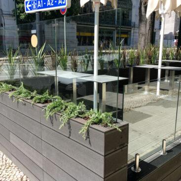 Plantação de esplanada lisboa