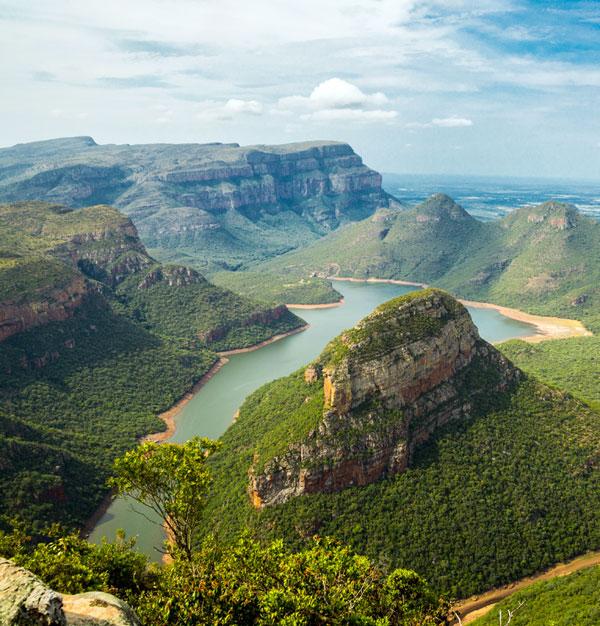Paisagem da África do Sul - estrelicia gigante nativa