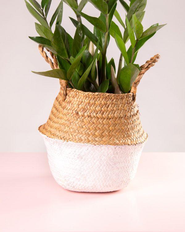 Cesto decorativo natural para plantas branco