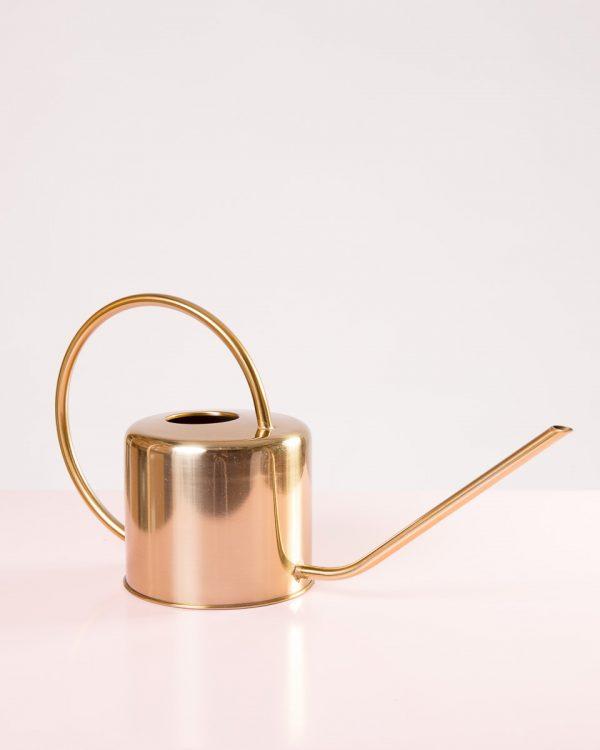 Regador vintage dourado aço inoxidável