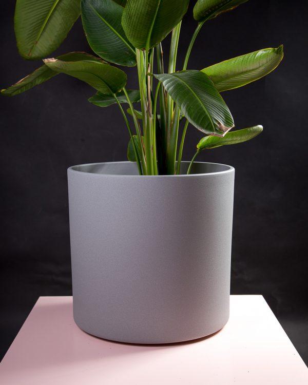Vaso decorativo para plantas Maceo sand XXXL cinza estrelicia