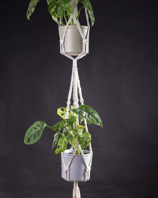 Macramé duplo para vasos suspensos com plantas monstera adanson