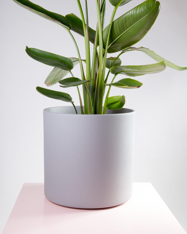 Vaso para plantas cerâmica cinza
