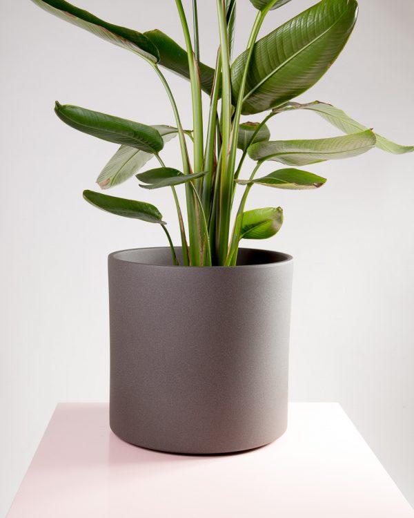 Vaso decorativo para plantas Maceo sand XXL antracite
