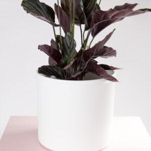 Vaso cerâmica Lucca XL