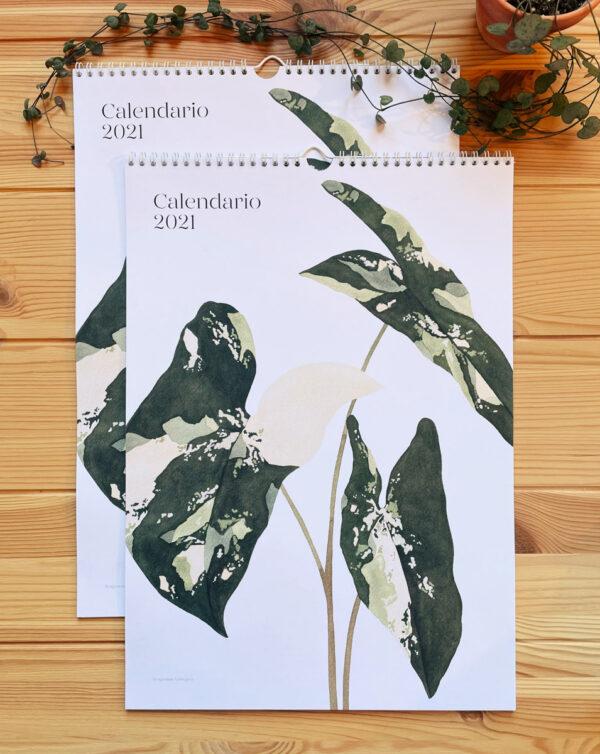 Calendario plantas interior 2021